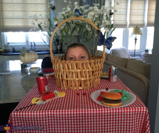 Picnic Table Costume