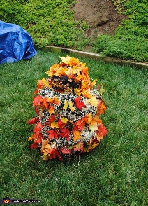 Nothing is ever as it seems on Halloween!, Pile of Fall Leaves Costume