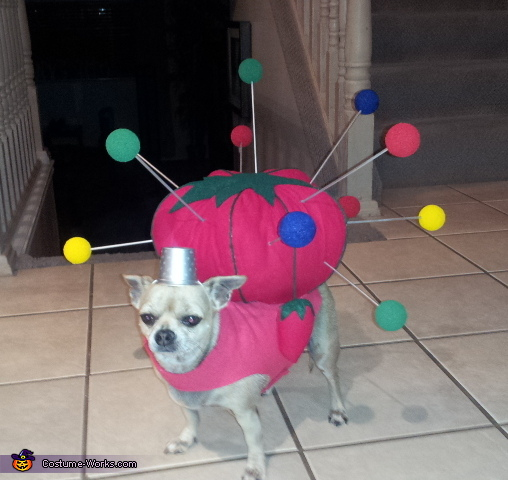 Pin Cushion Costume