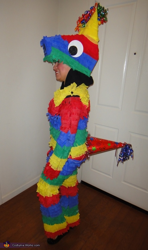 pinata costume Adult