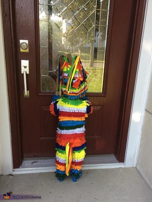 Pinata Homemade Costume