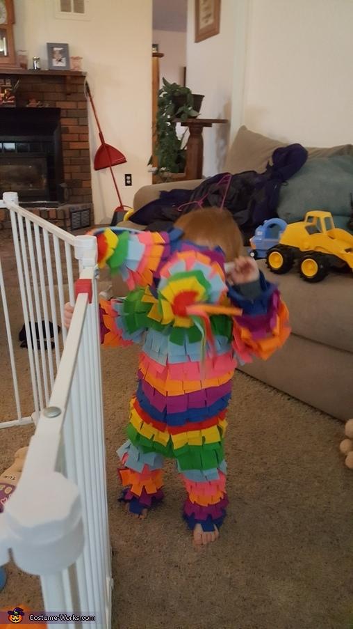 Dumb hat, Piñata Costume
