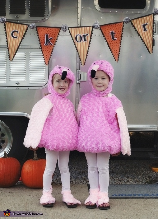 Pink Flamingos Costume