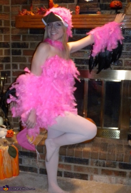 Pink Feathery Flamingo Costume