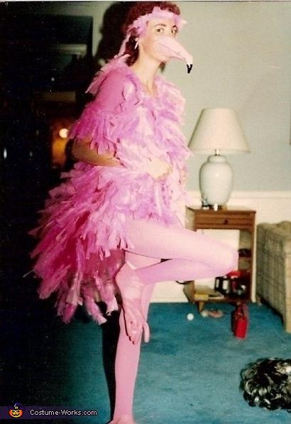 Pink Flamingo Costume