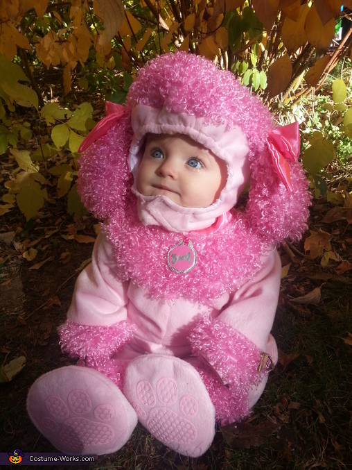 Pink Poodle Baby Costume