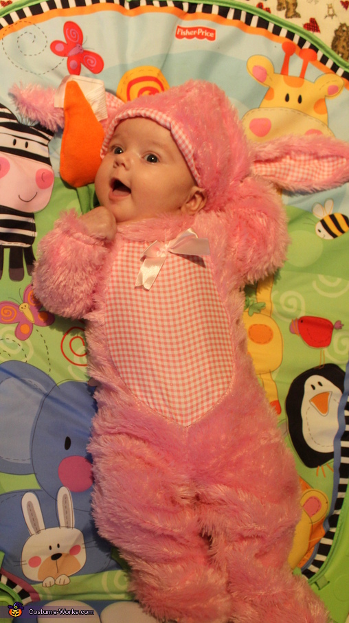 Pink Wabbit Costume