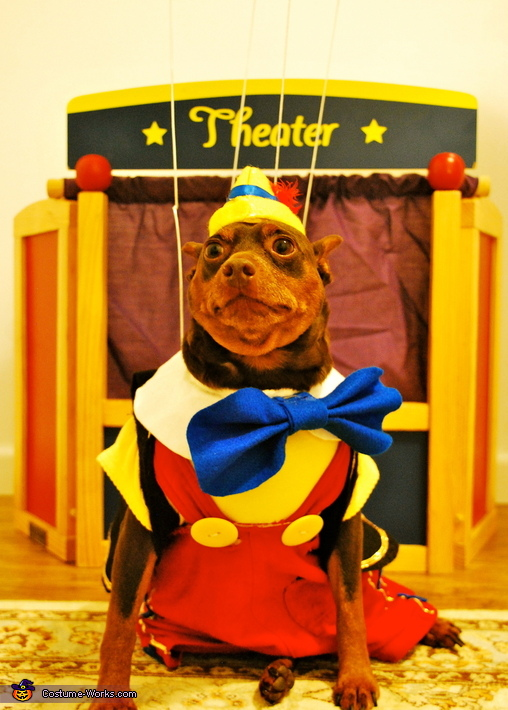 Pinocchio Dog Costume