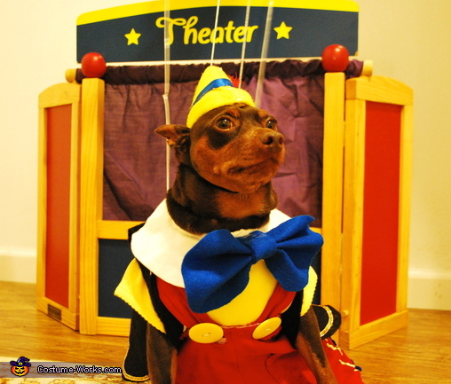 He's got no strings to hold him down!, Pinocchio Dog Costume