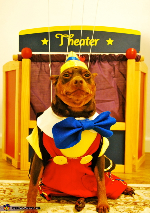 Off the the theatre!, Pinocchio Dog Costume