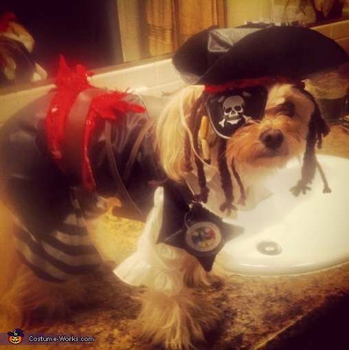 Pirate Pup Costume