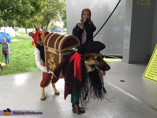 Elsa on stage, Pirate Thieves (Thief!) Dog Costume Costume