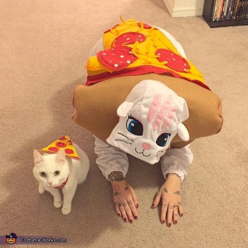 Pizza Cat Homemade Costume