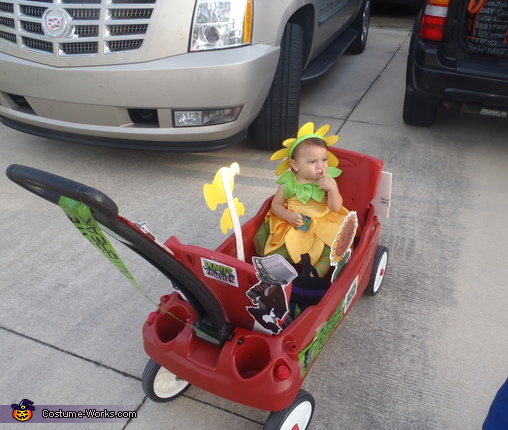 Sunflower in the wagon, Plants vs. Zombies Costumes