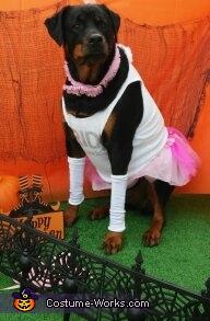 Ballerina Carla, Plus Size Ballerina Dog Costume