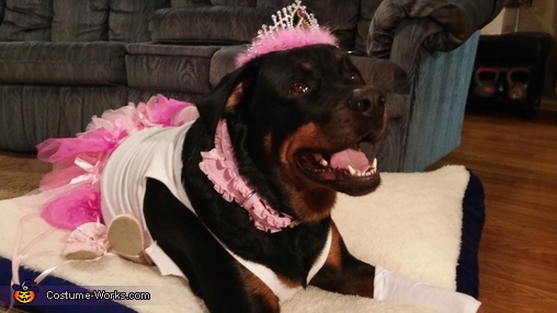 Carla Princess Ballerina, Plus Size Ballerina Dog Costume