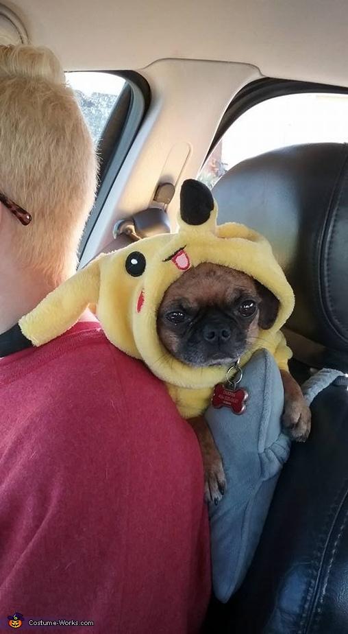 Pokemon Homemade Costume