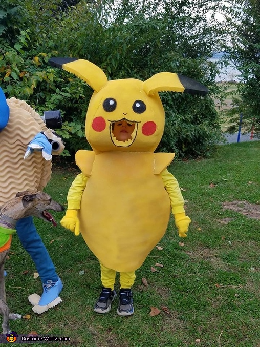 Pikachu, Pokemon Go Family Costume