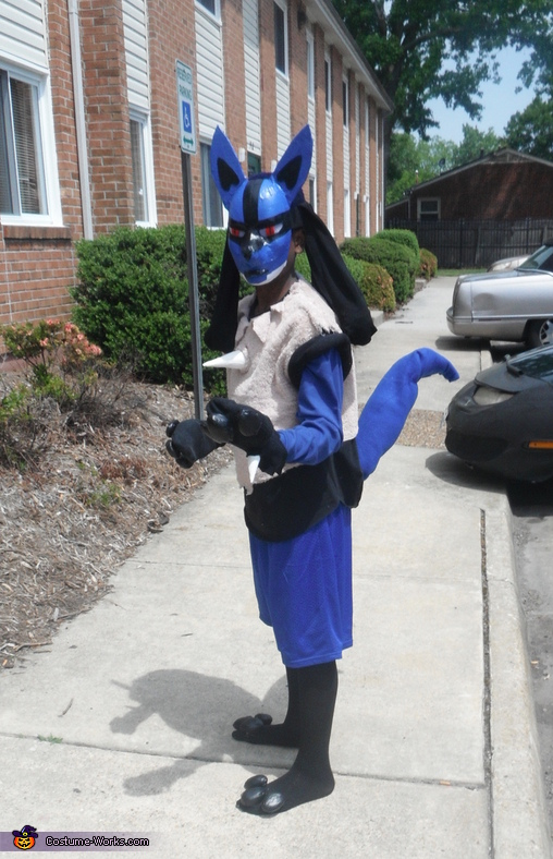Pokemon Lucario Costume
