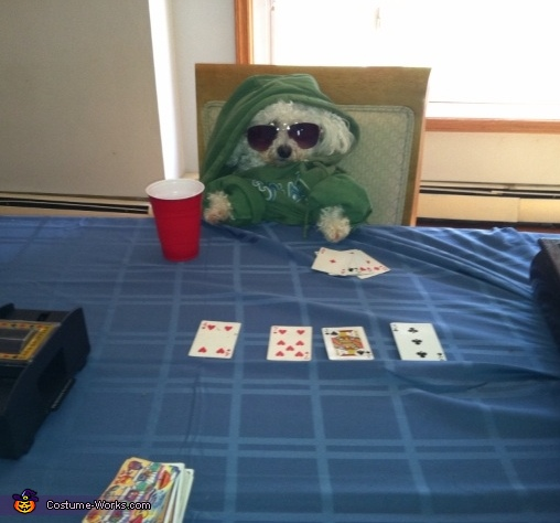 Homemade Poker Player Costume