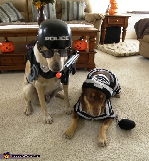 Police Dog and Prisoner Costumes