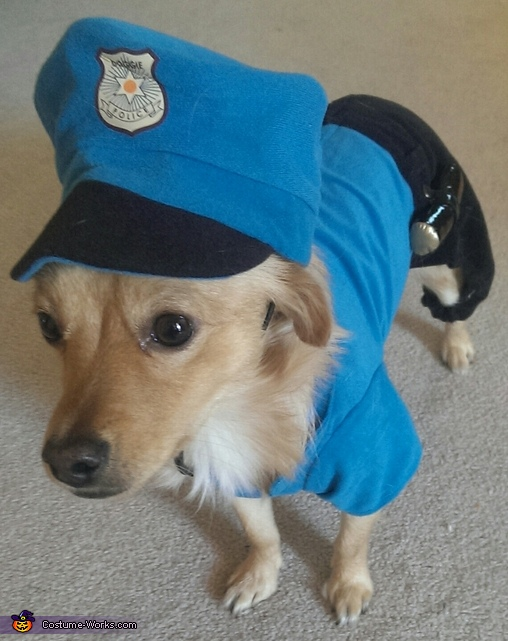 Police Officer Homemade Costume