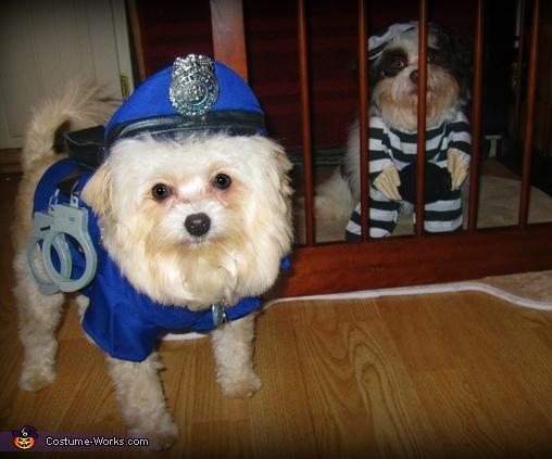 Police Officer Jailmate Costume