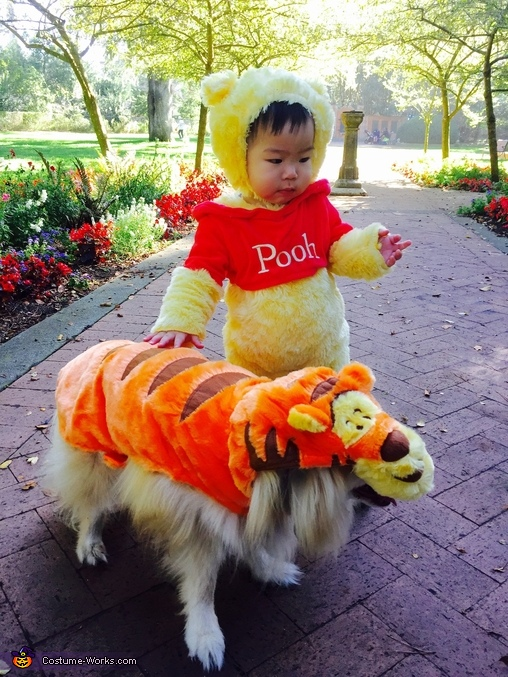 Pooh and Tigger Costume