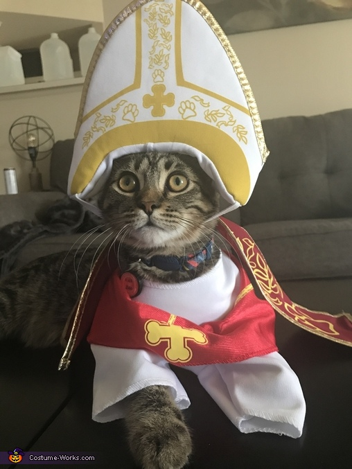 Pope Benedict Costume