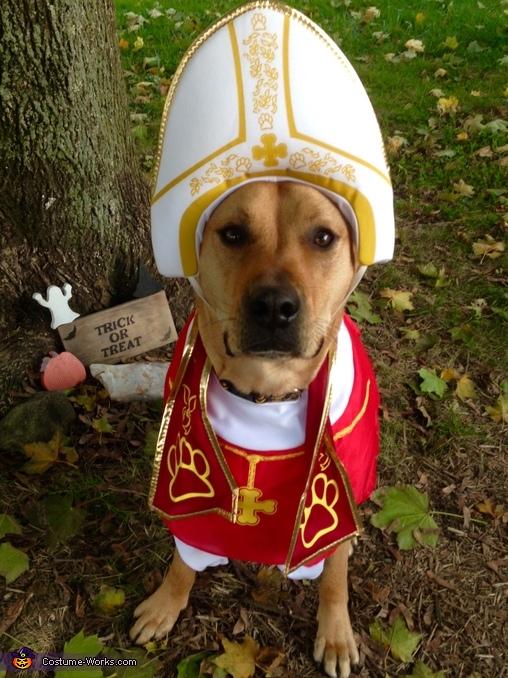 Pope Sonny Costume