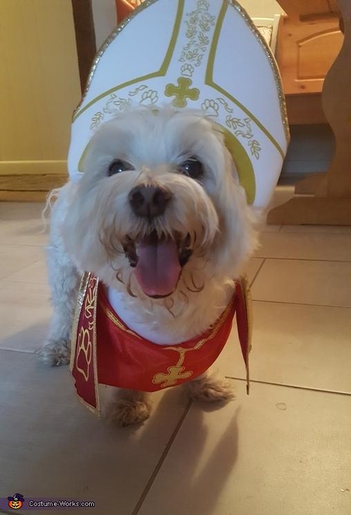 Pope Rox Costume