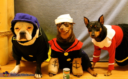 Popeye and his friends, Popeye and Friends Dogs Costume