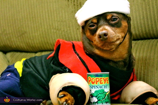 Eat Your Spinach! , Popeye and Friends Dogs Costume