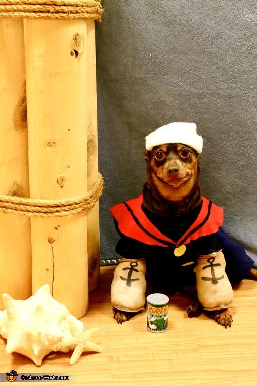 Popeye, Popeye and Olive Oyl Costume