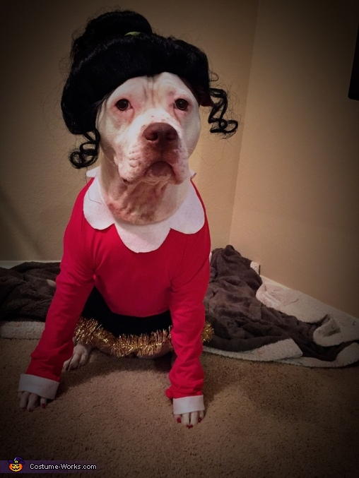 Olive Oyl and her portrait, Popeye and Olive Oyl Dog Costume