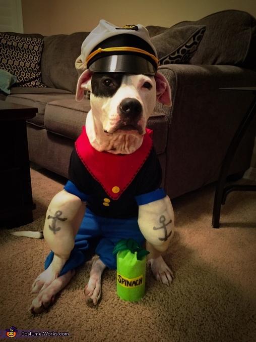 Popeye and his self portrait , Popeye and Olive Oyl Dog Costume