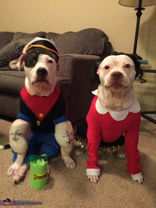 Dynamic Duo, Popeye and Olive Oyl Dog Costume