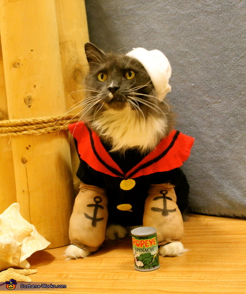 Popeye the Sailor Kitty Costume