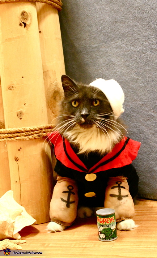 Popeye the Sailor Man Cat Costume