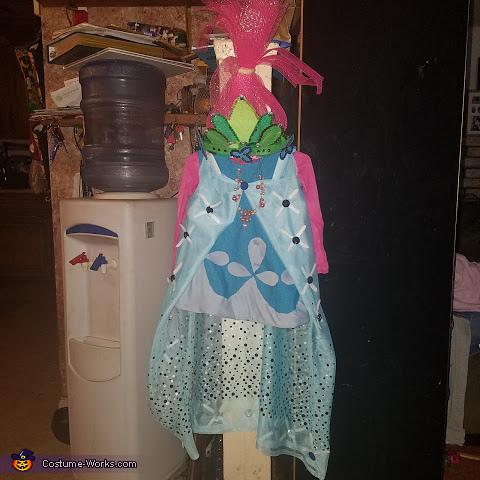 The costume, Poppy Costume