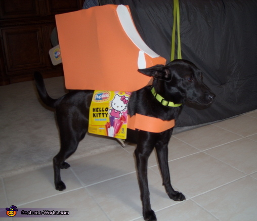 Popsicle Dog Costume