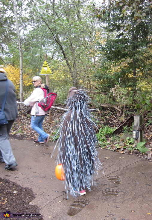 Backside of the porcupine - 2, Porcupine Costume