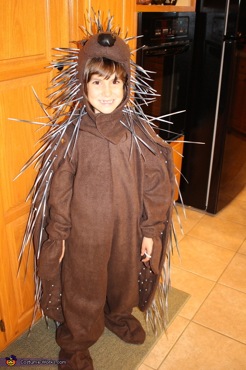 Front view of porcupine, Porcupine Costume