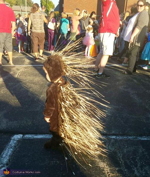 Porcupine Baby Costume