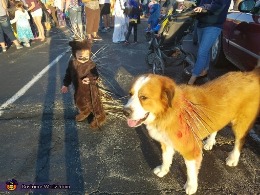 A porcupine and his dog, Porcupine Baby Costume