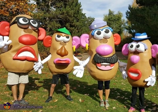 Potato Heads - A Bit Mixed Up, Mr. Potato Head Family Costume