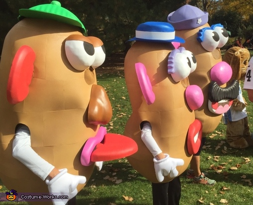 More Potatoes, Mr. Potato Head Family Costume