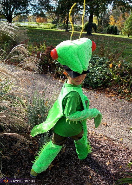 Praying Mantis, Praying Mantis Costume