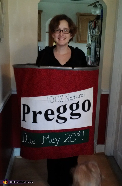 Preggo Sauce Pregnancy Announcement Costume