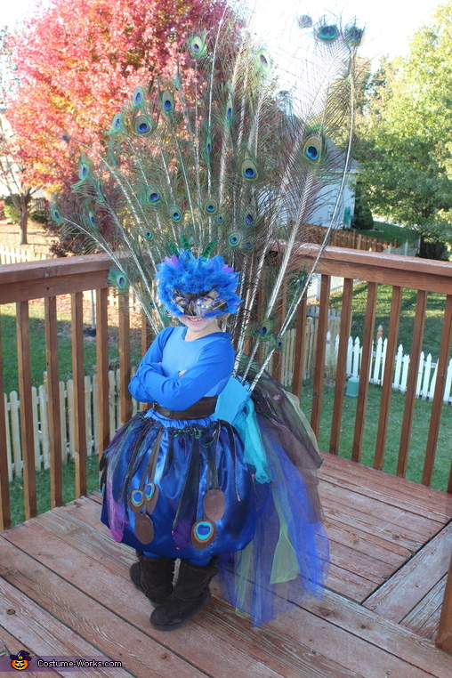 Pretty Little Peacock Costume